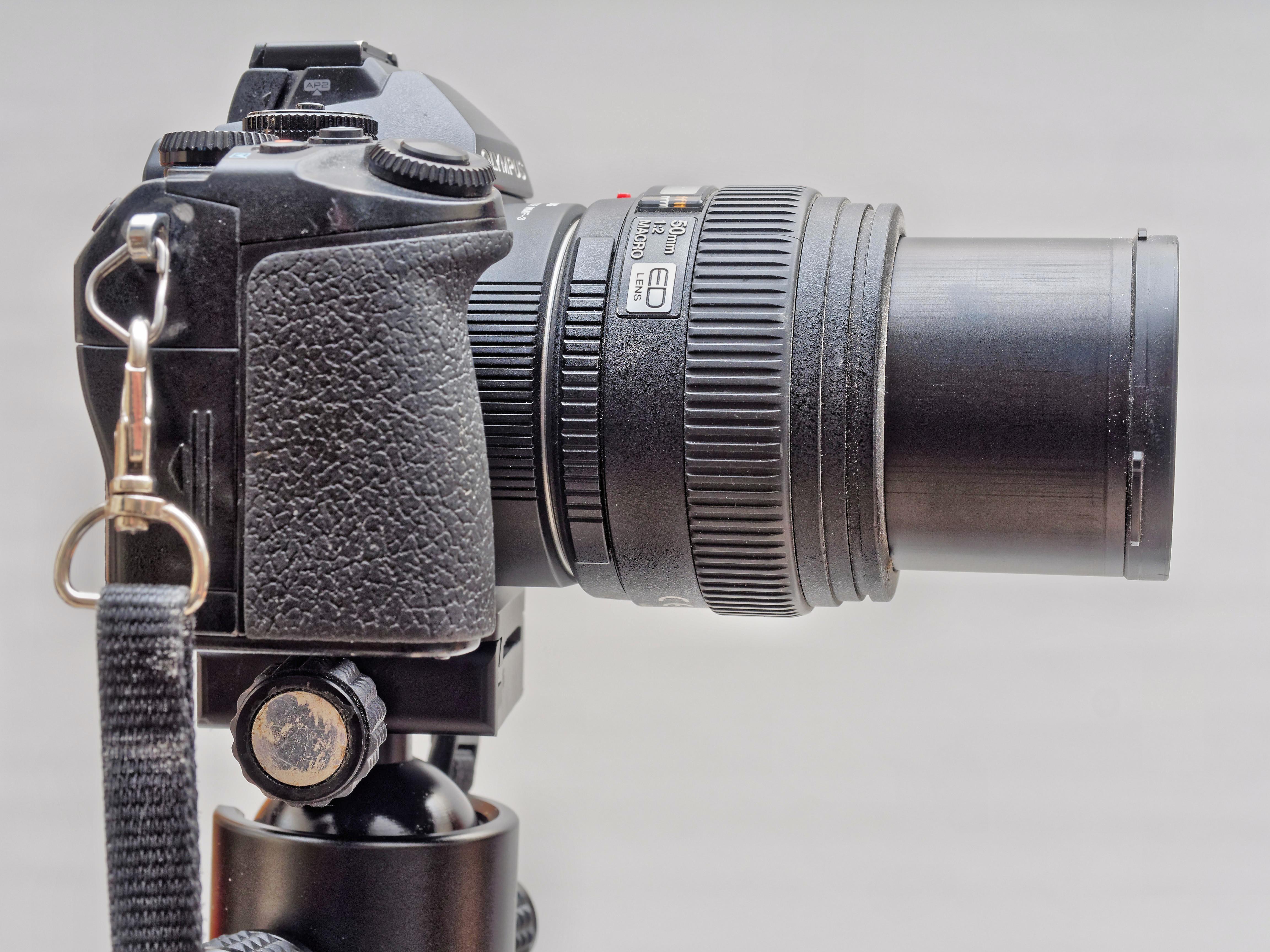 E-M1-Z50-2.jpeg