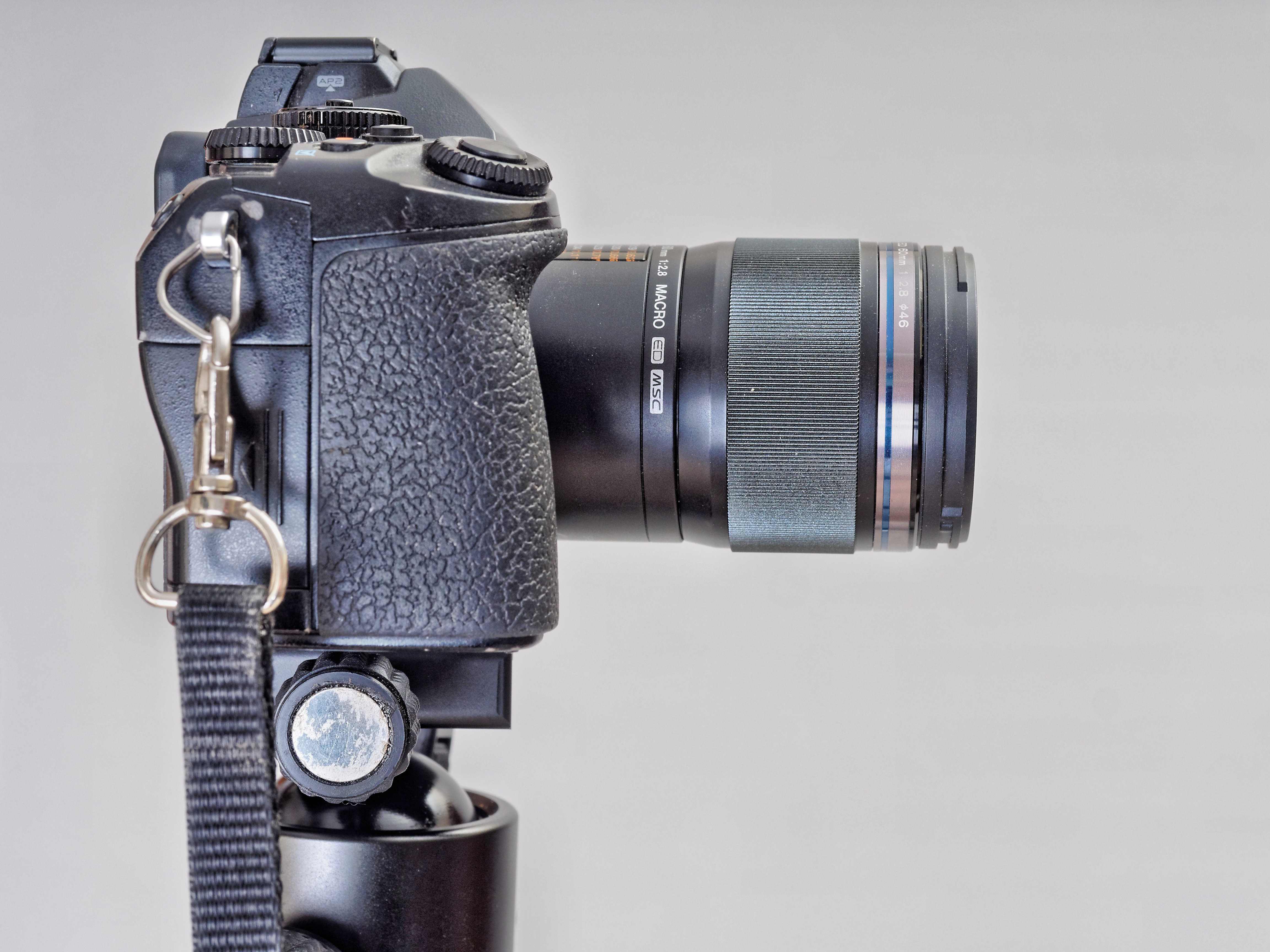 This should be E-M1-Z60-1.jpeg.  Is it missing?