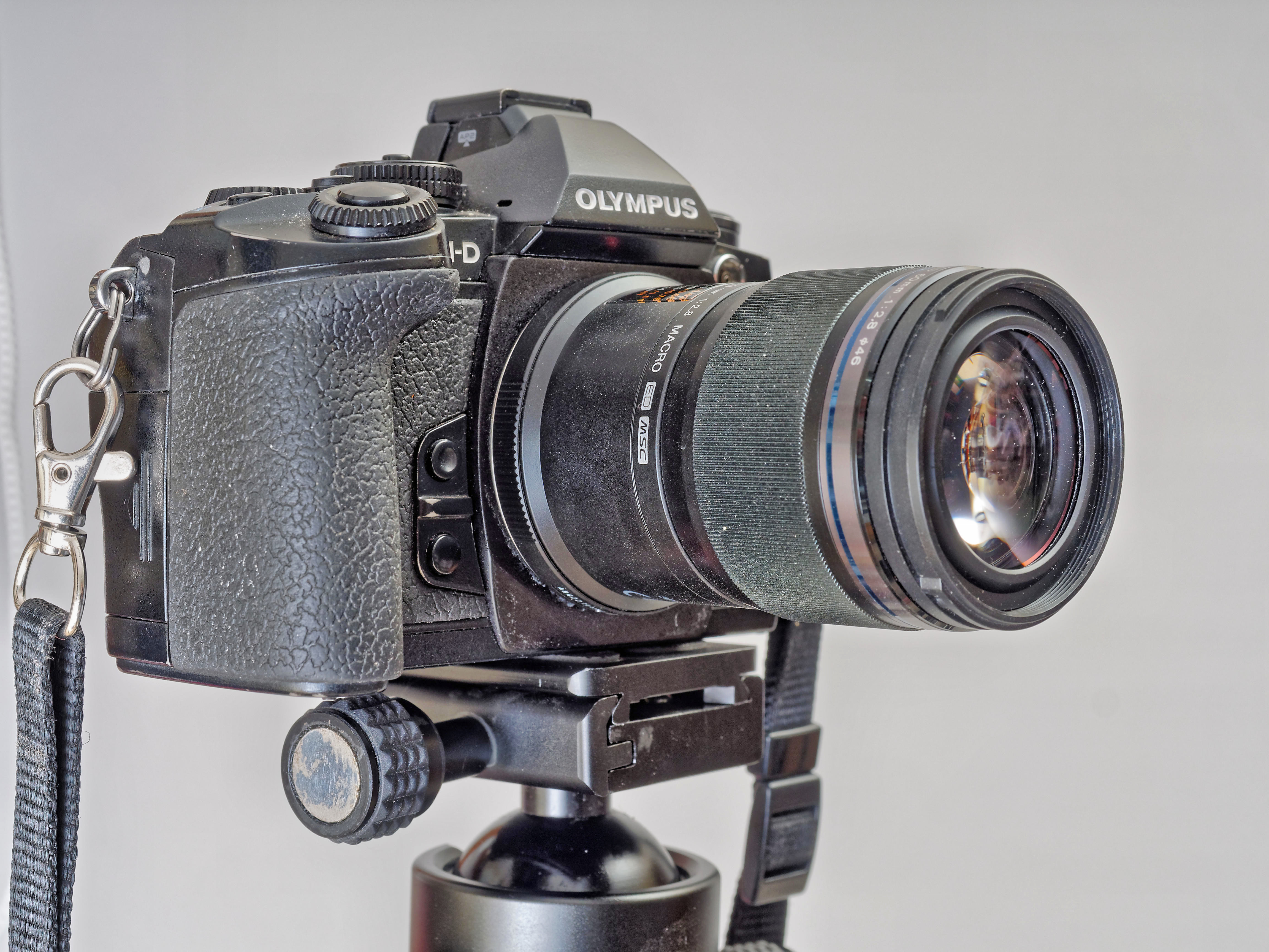 E-M1-Z60-2.jpeg