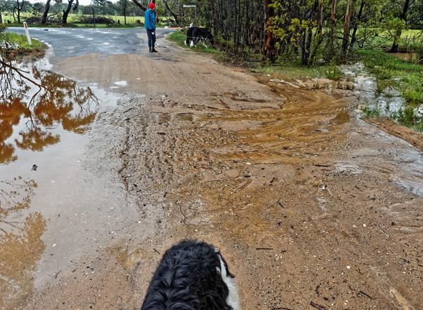 Rain-11.jpeg