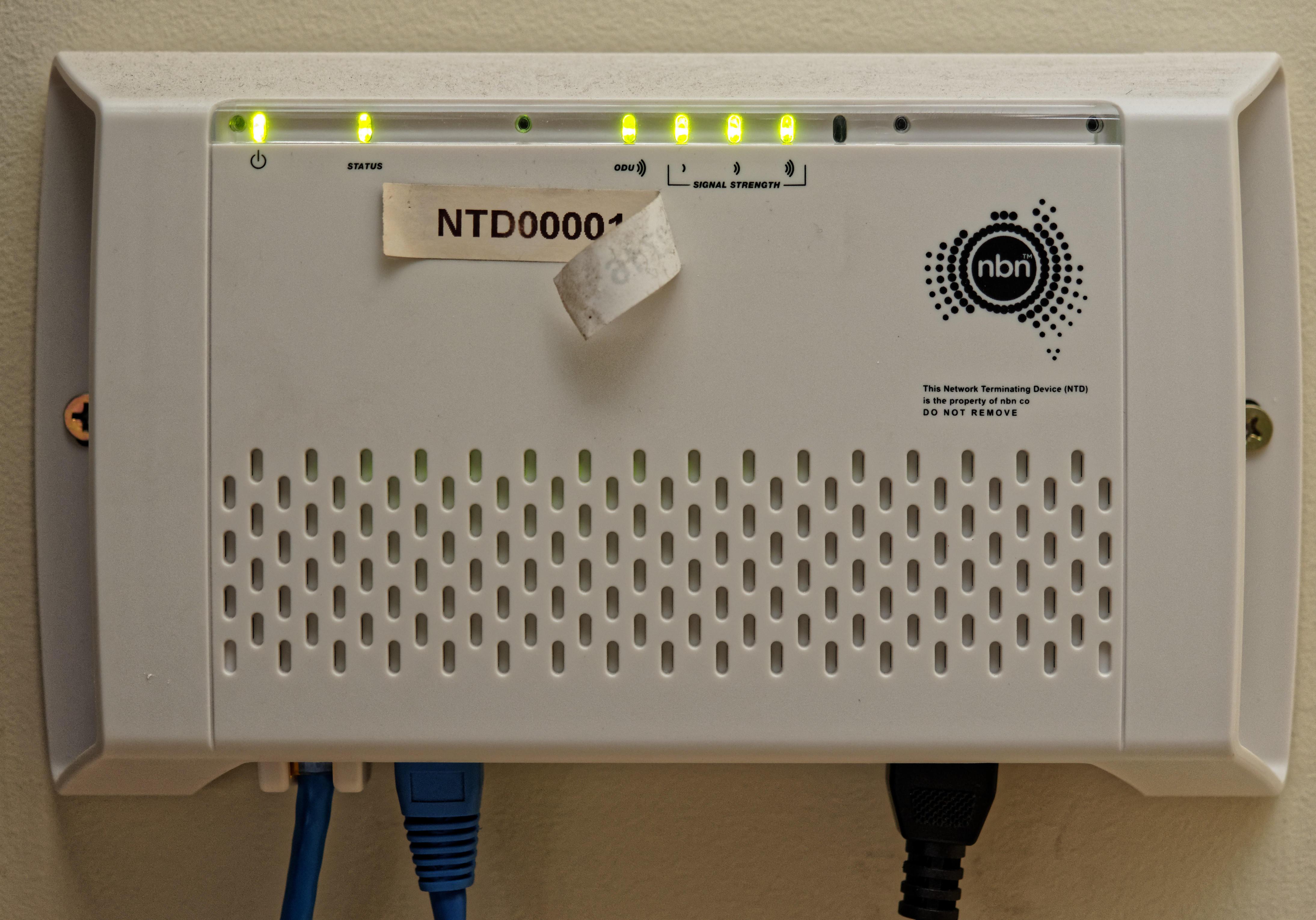 NTD-1.jpeg