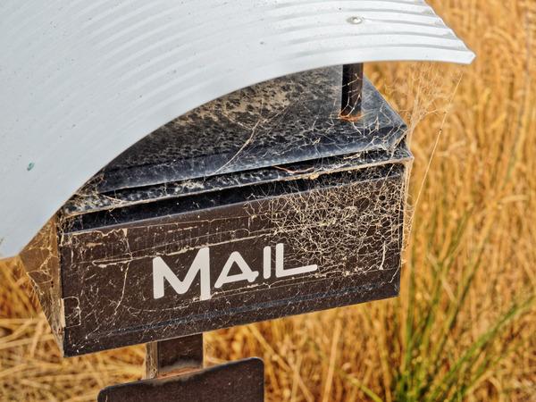 Cobweb-mail.jpeg