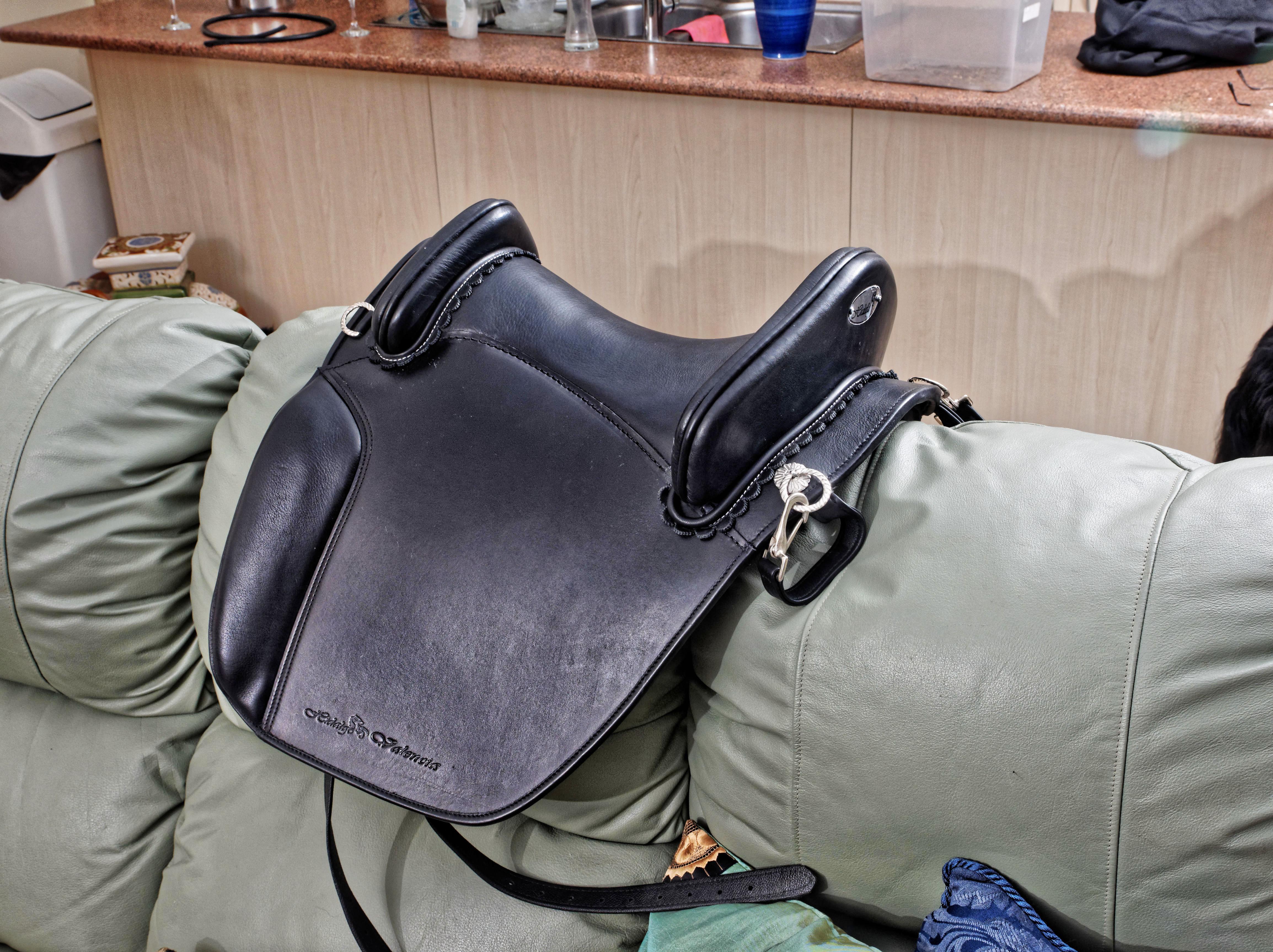 Saddle-5.jpeg