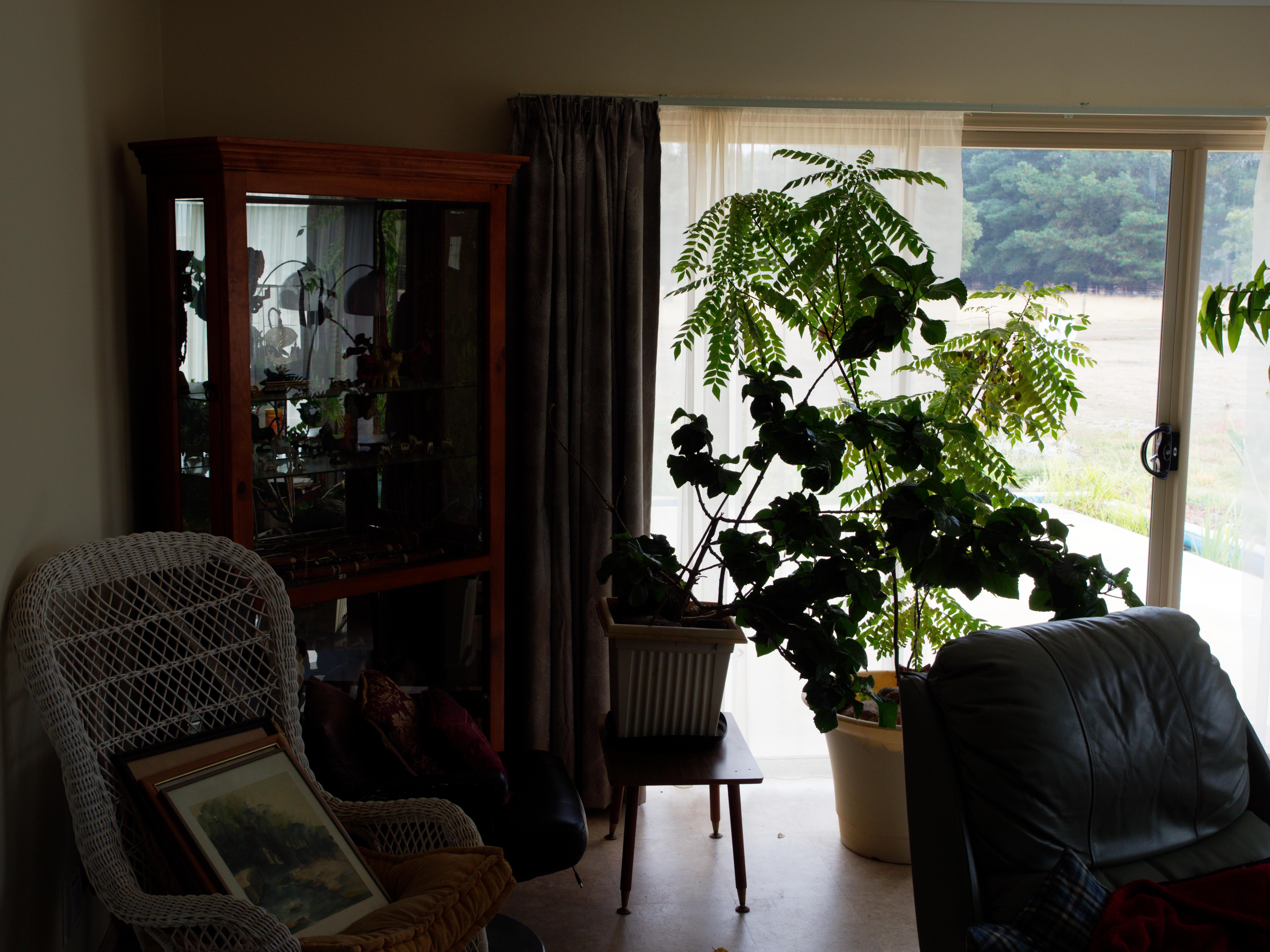 Lounge-room-2-orig.jpeg
