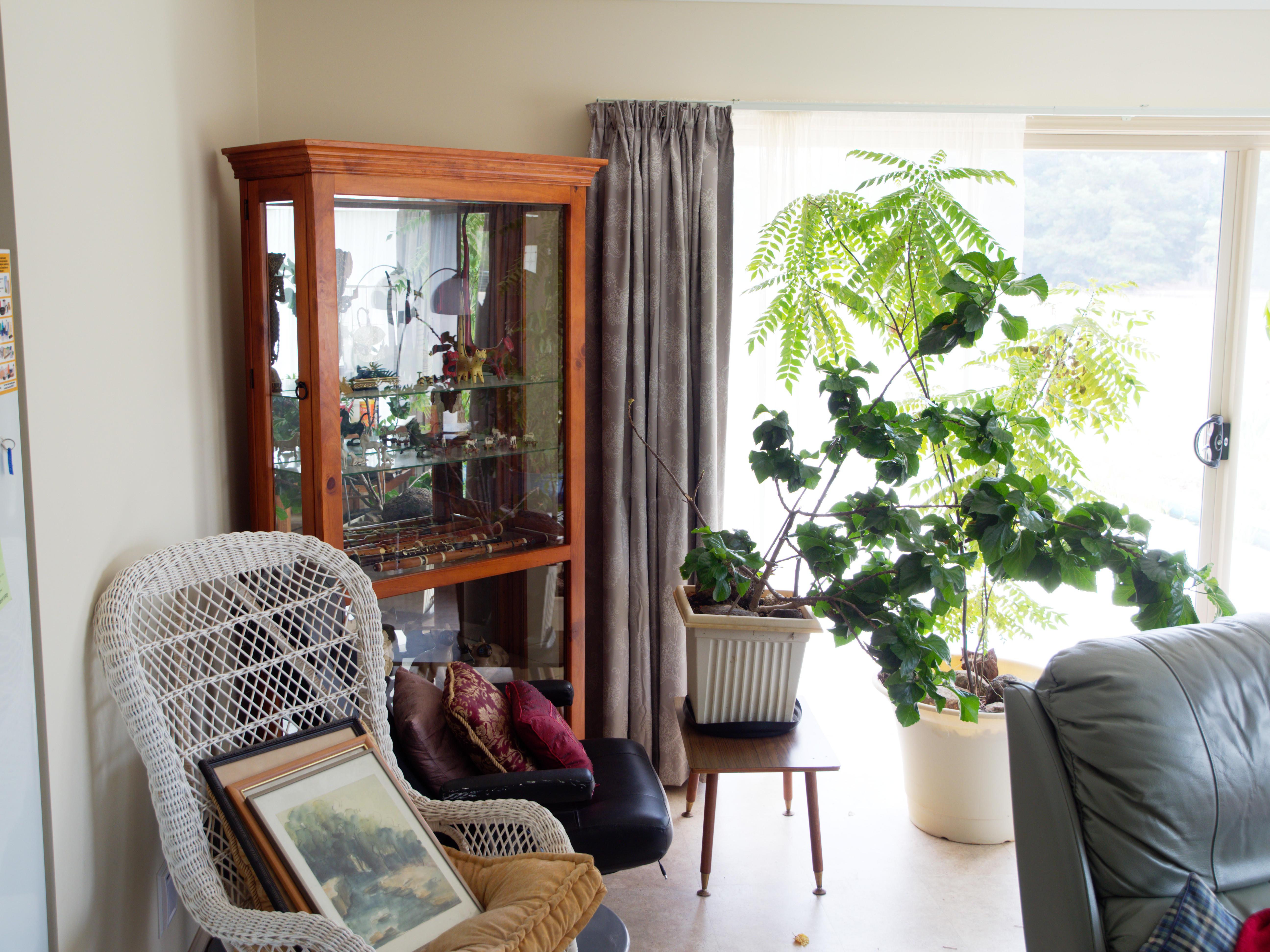 Lounge-room-3-orig.jpeg