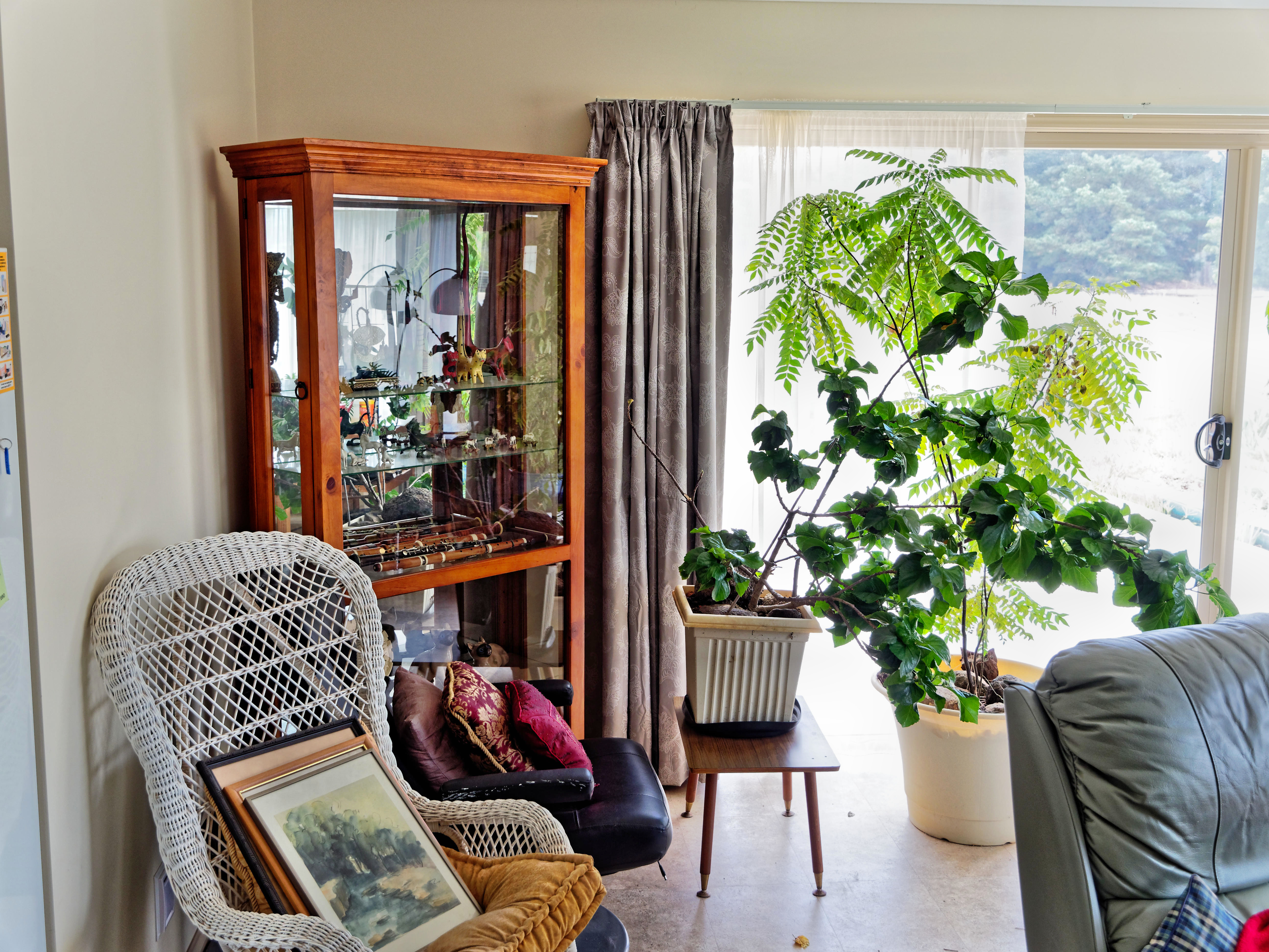 Lounge-room-3.jpeg