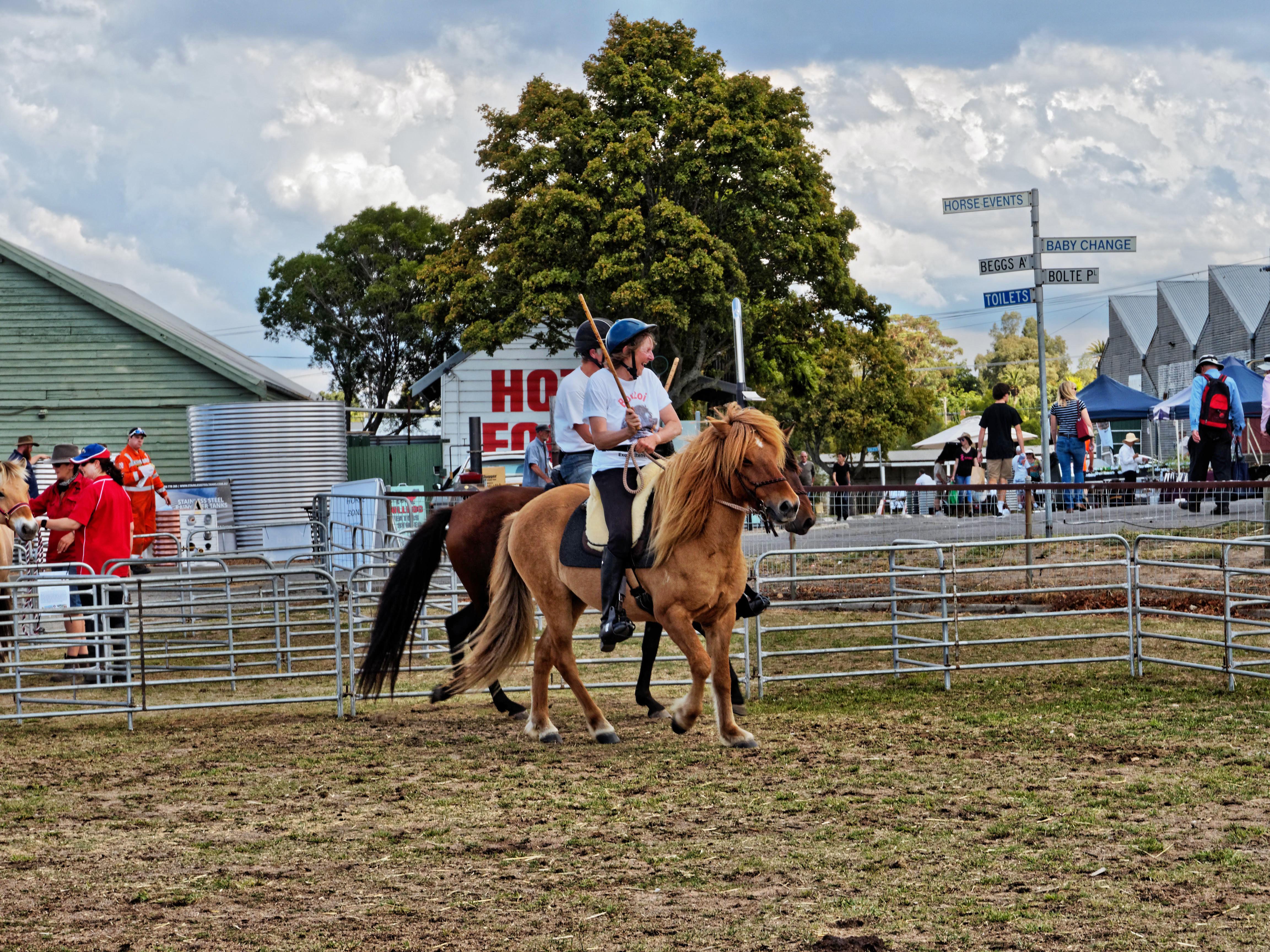 Rural-lifestyle-expo-140.jpeg