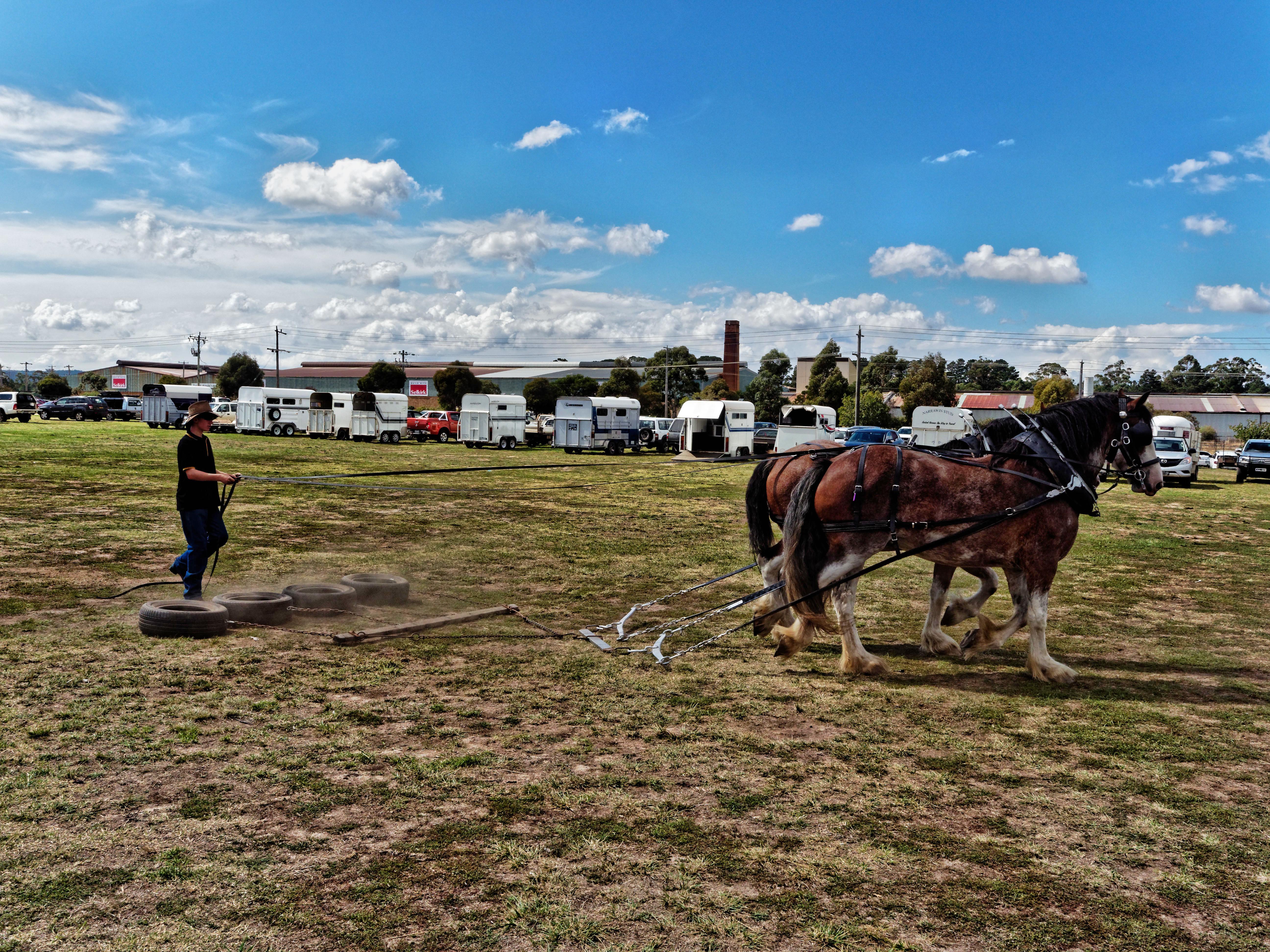 Rural-lifestyle-expo-38.jpeg