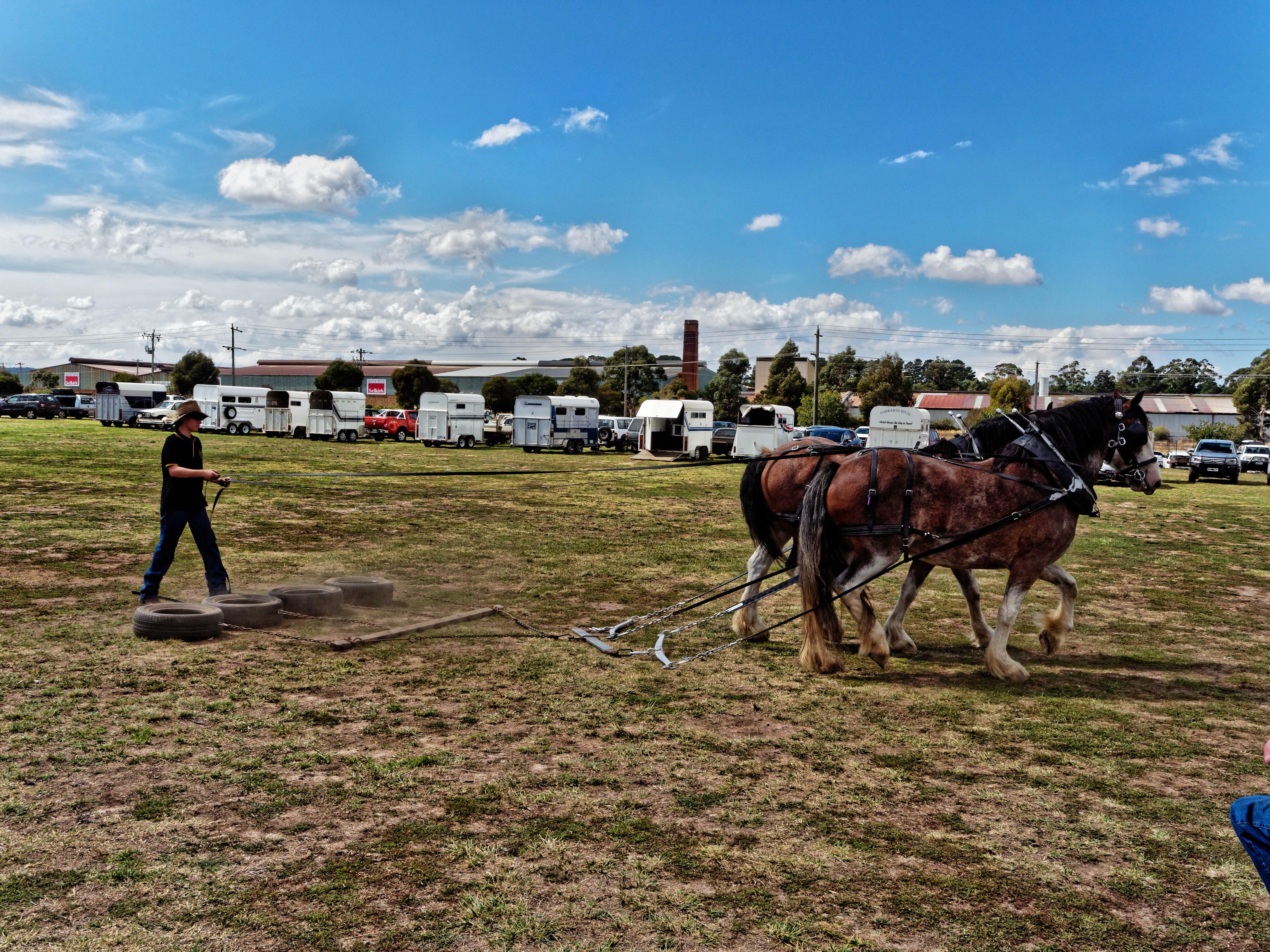 Rural-lifestyle-expo-39.jpeg