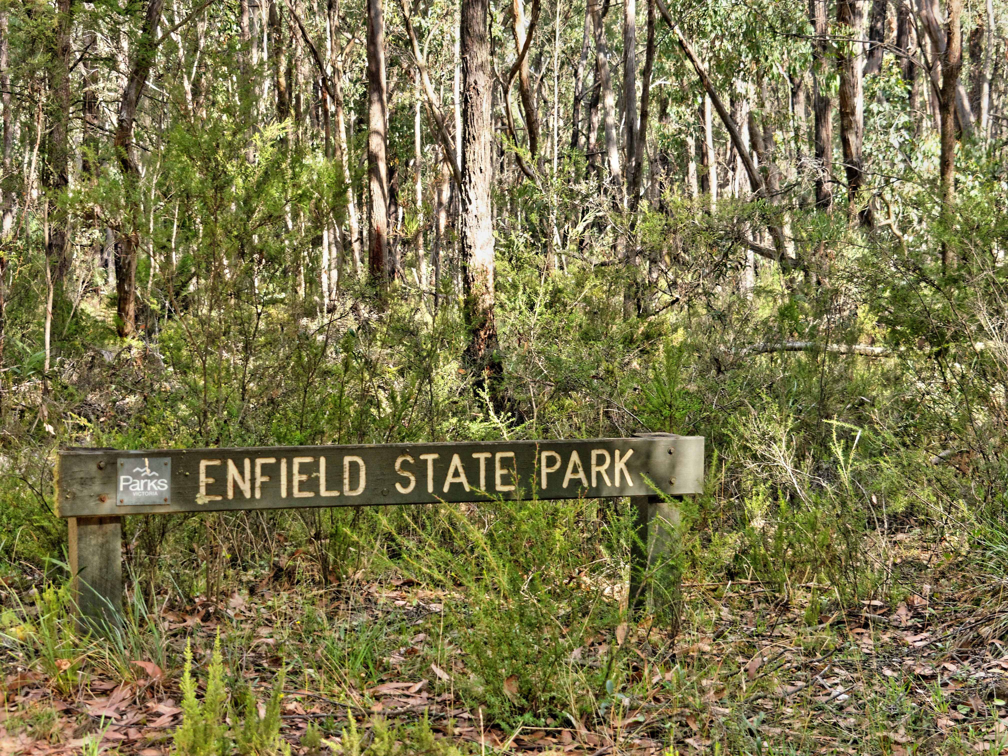 Enfield-state-park.jpeg