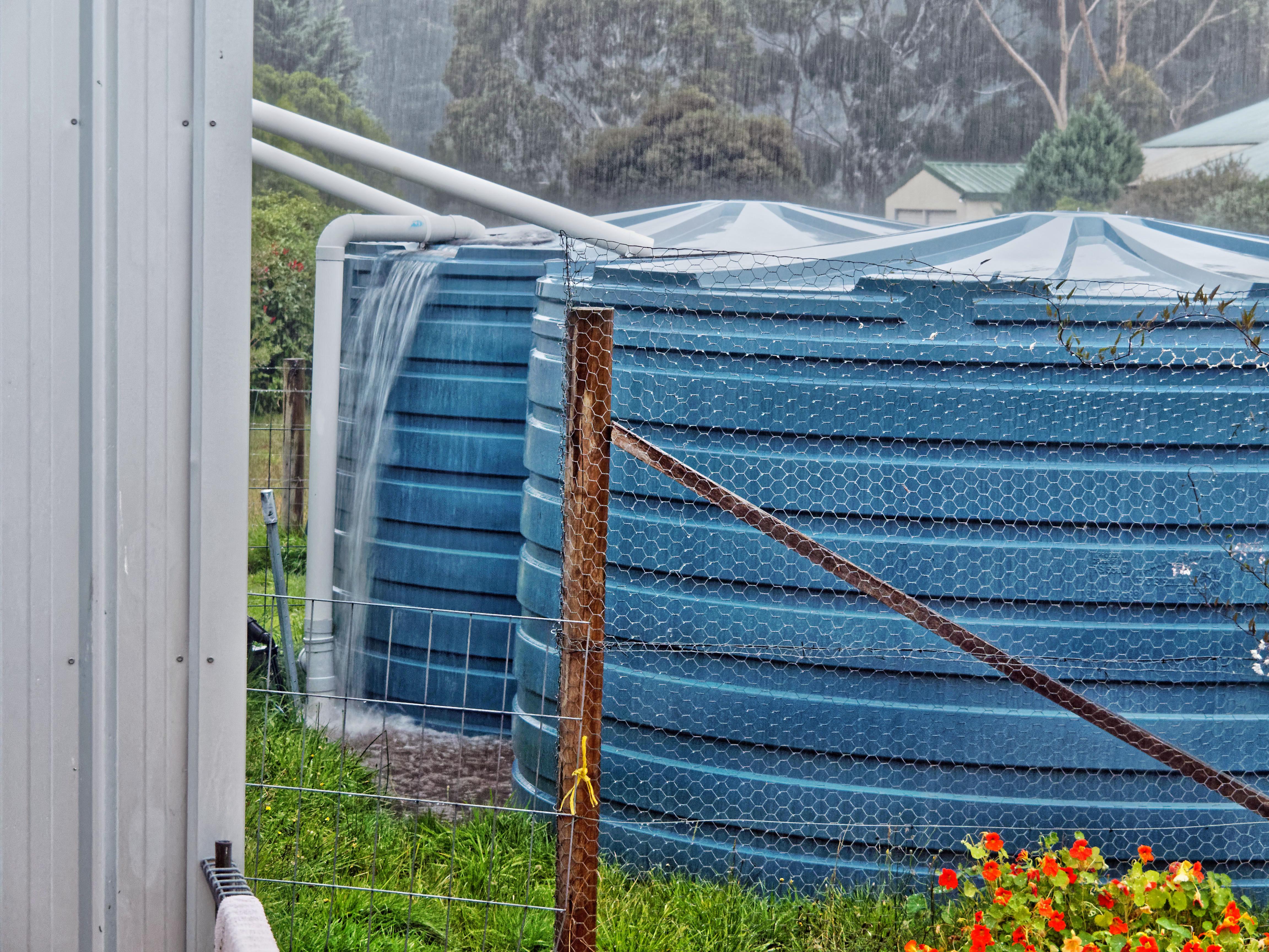 Rain-1.jpeg