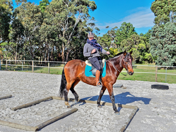 Sharryn-Yvonne-riding-10.jpeg