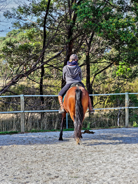 Sharryn-Yvonne-riding-103.jpeg