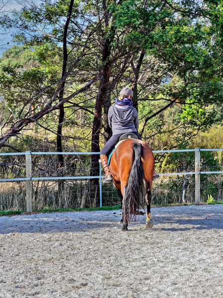 Sharryn-Yvonne-riding-104.jpeg
