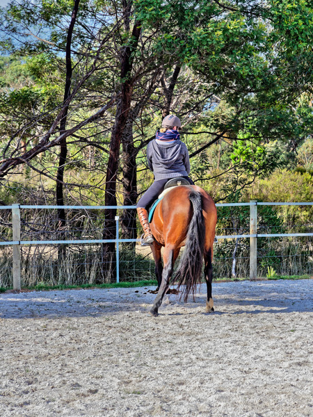 Sharryn-Yvonne-riding-105.jpeg