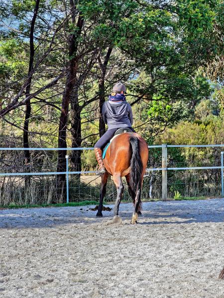 Sharryn-Yvonne-riding-106.jpeg