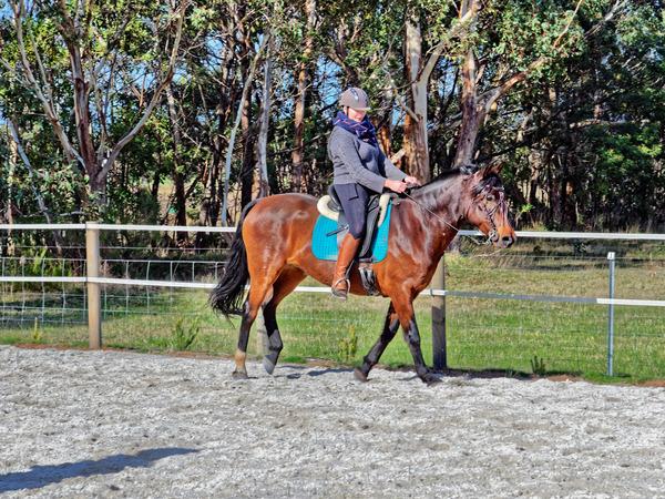 Sharryn-Yvonne-riding-109.jpeg