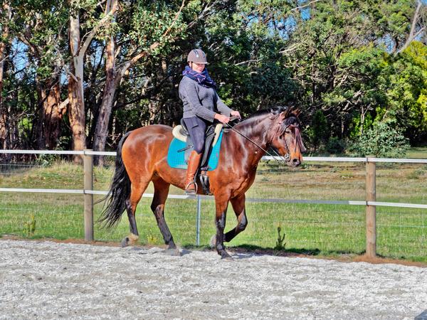 Sharryn-Yvonne-riding-110.jpeg