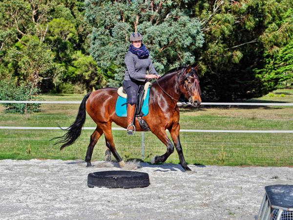 Sharryn-Yvonne-riding-111.jpeg