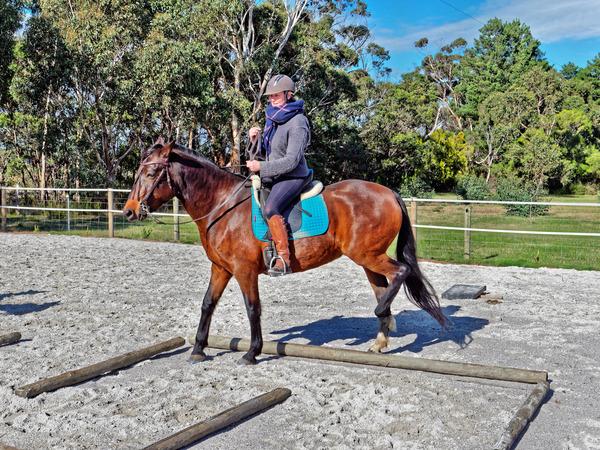 Sharryn-Yvonne-riding-14.jpeg