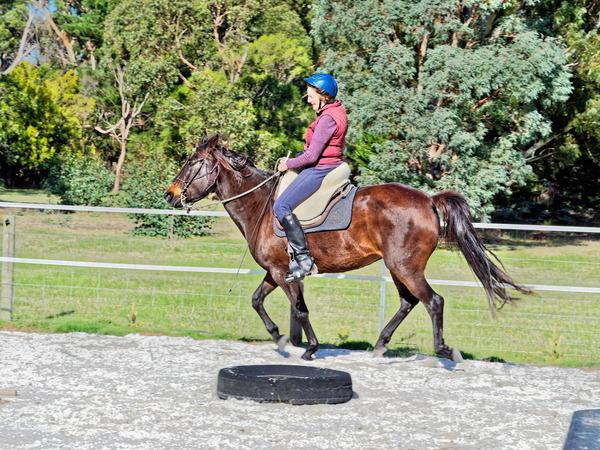Sharryn-Yvonne-riding-2.jpeg