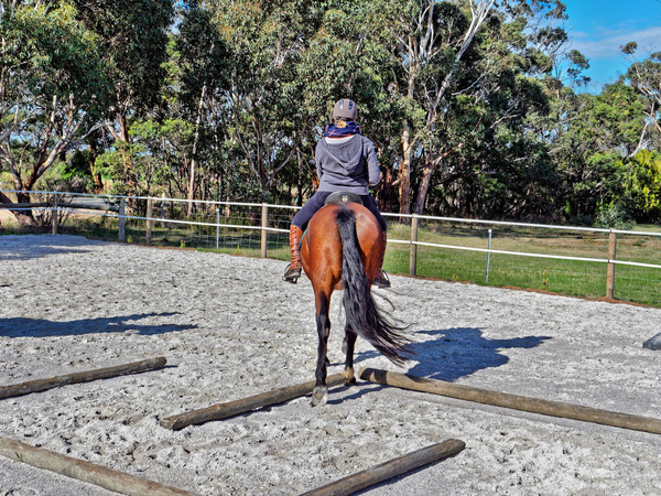 Sharryn-Yvonne-riding-20.jpeg