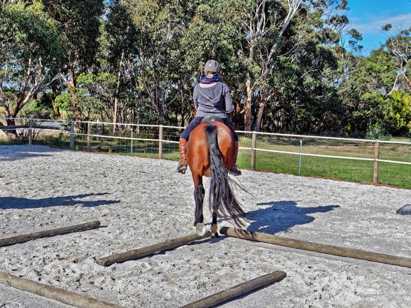 Sharryn-Yvonne-riding-21.jpeg