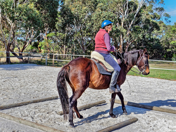 Sharryn-Yvonne-riding-28.jpeg