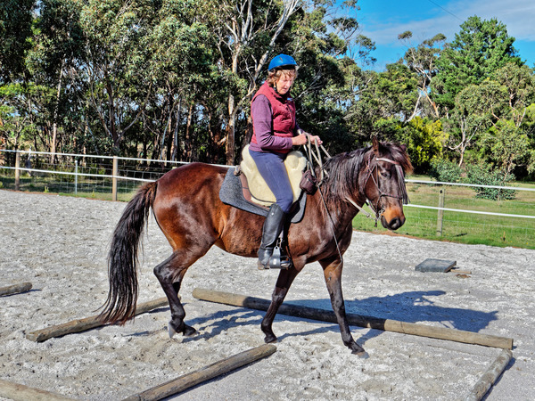 Sharryn-Yvonne-riding-29.jpeg