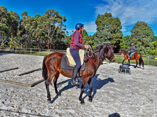 Sharryn-Yvonne-riding-32.jpeg