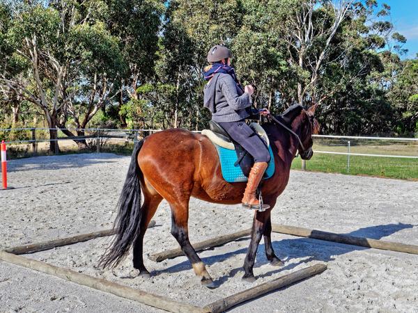Sharryn-Yvonne-riding-38.jpeg