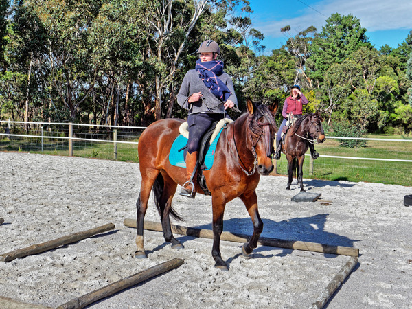 Sharryn-Yvonne-riding-41.jpeg