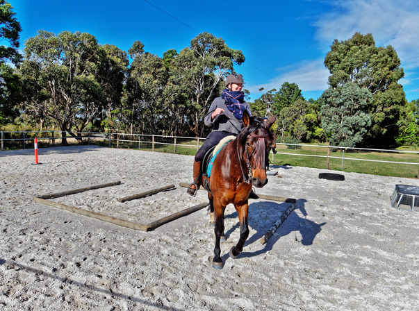 Sharryn-Yvonne-riding-44.jpeg