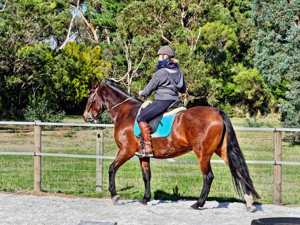Sharryn-Yvonne-riding-47.jpeg