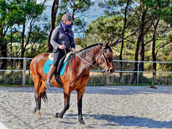 Sharryn-Yvonne-riding-50.jpeg