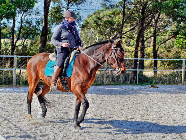 Sharryn-Yvonne-riding-51.jpeg