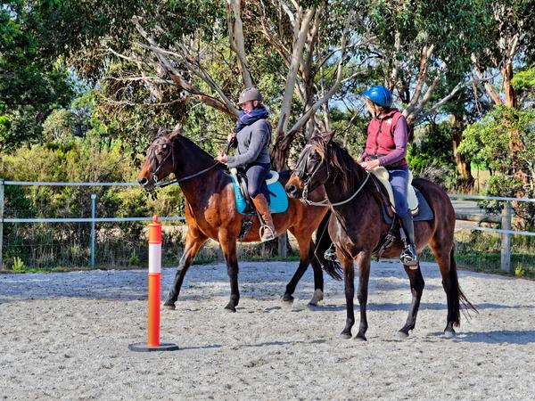 Sharryn-Yvonne-riding-53.jpeg