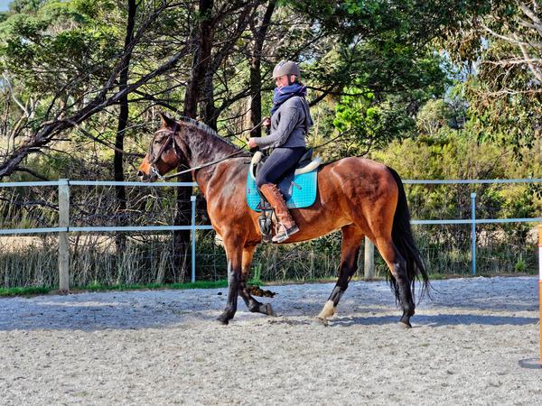 Sharryn-Yvonne-riding-54.jpeg