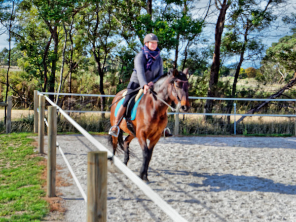 Sharryn-Yvonne-riding-55.jpeg