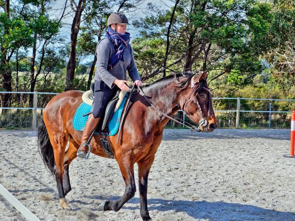 Sharryn-Yvonne-riding-56.jpeg
