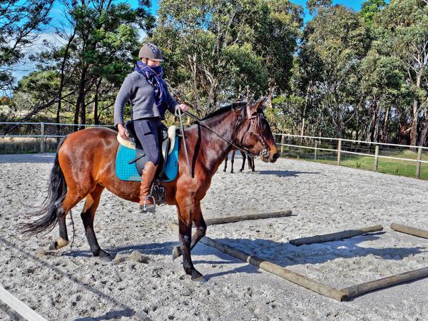 Sharryn-Yvonne-riding-57.jpeg