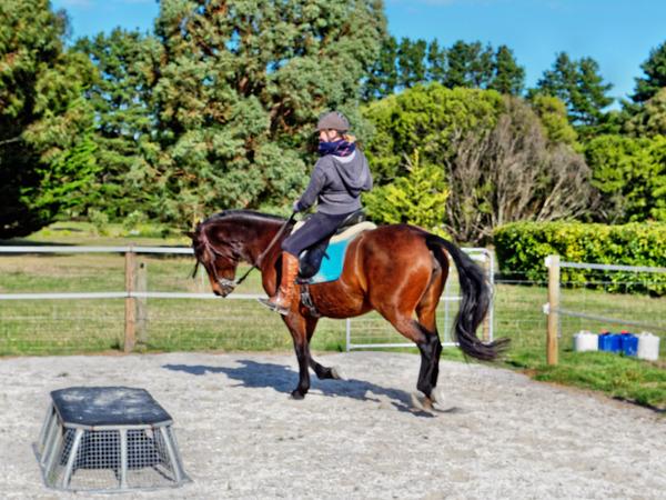 Sharryn-Yvonne-riding-59.jpeg
