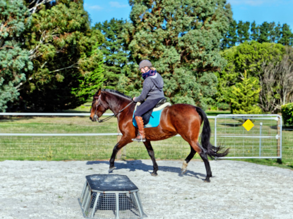 Sharryn-Yvonne-riding-60.jpeg