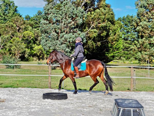 Sharryn-Yvonne-riding-62.jpeg