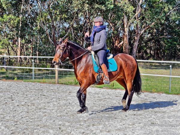 Sharryn-Yvonne-riding-66.jpeg