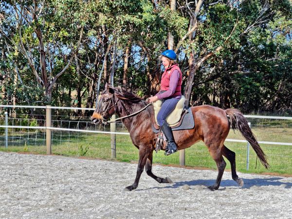 Sharryn-Yvonne-riding-70.jpeg