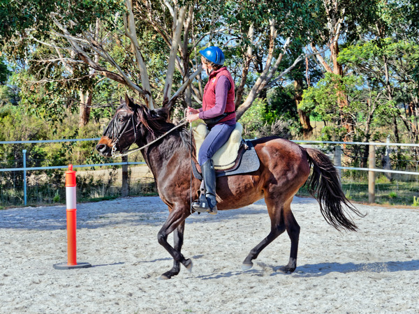 Sharryn-Yvonne-riding-73.jpeg