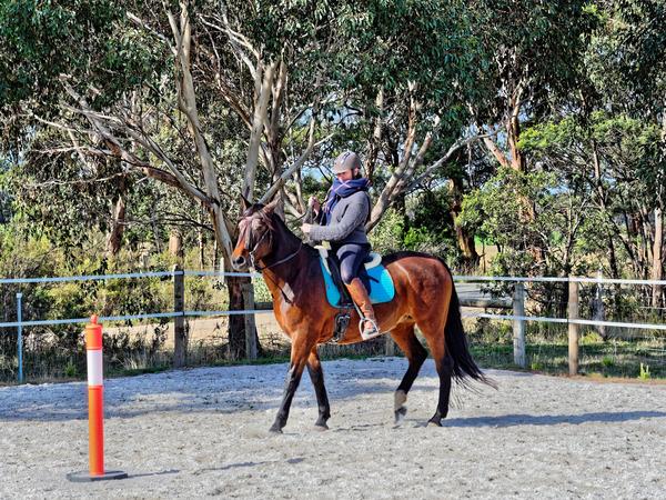 Sharryn-Yvonne-riding-77.jpeg