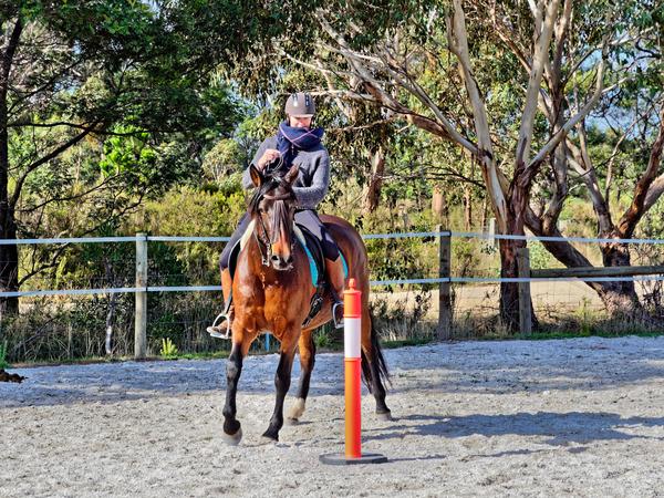 Sharryn-Yvonne-riding-78.jpeg