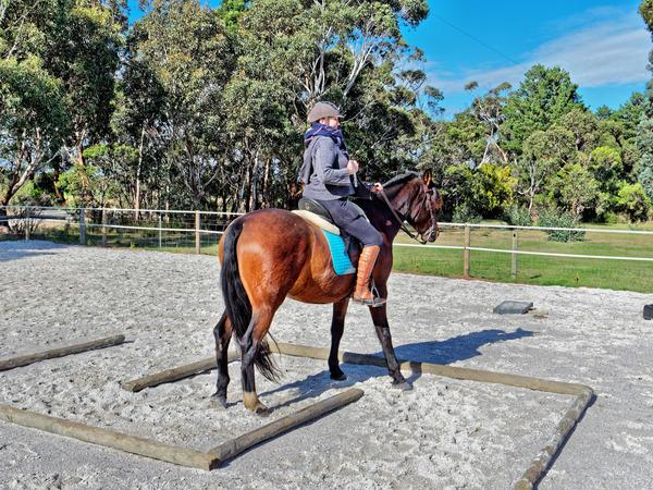 Sharryn-Yvonne-riding-8.jpeg